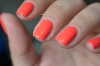 ILNP_SUMMER 2015_SO CORAL_LD_03