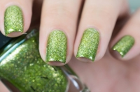 ILNP_Holiday 2015_Limelight_02