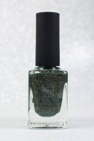 ILNP_Winter 2015_Ski lodge_01