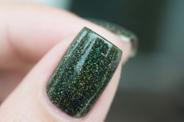 ILNP_Winter 2015_Ski lodge_10