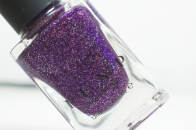 ILNP_Spring Jelly 2016_BFF's_09