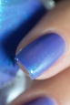 ILNP_Summer Shimmers 2016_Wallflower_05