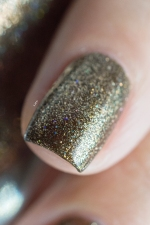 ilnp_new-year-2016_caesar_002
