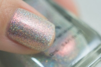 ilnp_spring-2017_rosewater_04