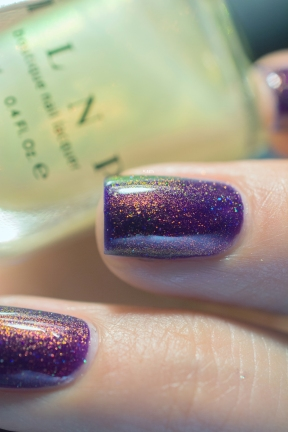 ilnp_spring-2017_the-magician_05