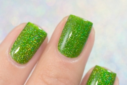 ILNP_Summer 2017 Jellies_Someday_02