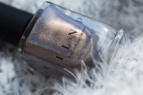 ILNP_Fall 2017 Ultra Holos_Cable Car_02
