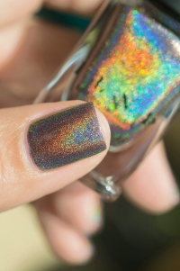 ILNP_Fall 2017 Ultra Holos_Cable Car_09