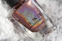 ILNP_Fall 2017 Ultra Holos_Dinner Party_03