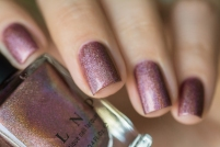 ILNP_Fall 2017 Ultra Holos_Dinner Party_04
