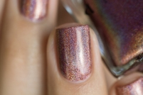 ILNP_Fall 2017 Ultra Holos_Dinner Party_06