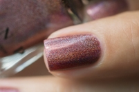 ILNP_Fall 2017 Ultra Holos_Dinner Party_07