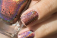 ILNP_Fall 2017 Ultra Holos_Dinner Party_08