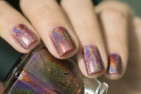 ILNP_Fall 2017 Ultra Holos_Dinner Party_09