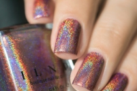 ILNP_Fall 2017 Ultra Holos_Dinner Party_10