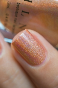 ILNP_Fall 2017 Ultra Holos_Grace_05