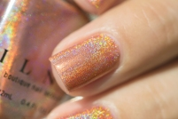 ILNP_Fall 2017 Ultra Holos_Grace_11