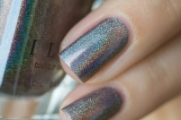 ILNP_Fall 2017 Ultra Holos_Sticks and Stones_04