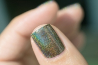 ILNP_Fall 2017 Ultra Holos_Treehouse_09