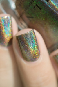 ILNP_Fall 2017 Ultra Holos_Treehouse_10