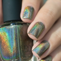 ILNP_Fall 2017 Ultra Holos_Treehouse_11