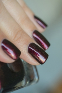 ILNP_Fall 2017_Lights Out_06