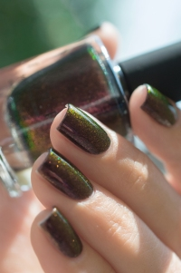 ILNP_Fall 2017_Lights Out_08