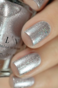 ILNP_Winter 2017_Avalanche_03