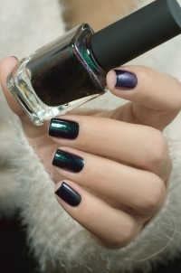 ILNP_Winter 2017_Salem_05